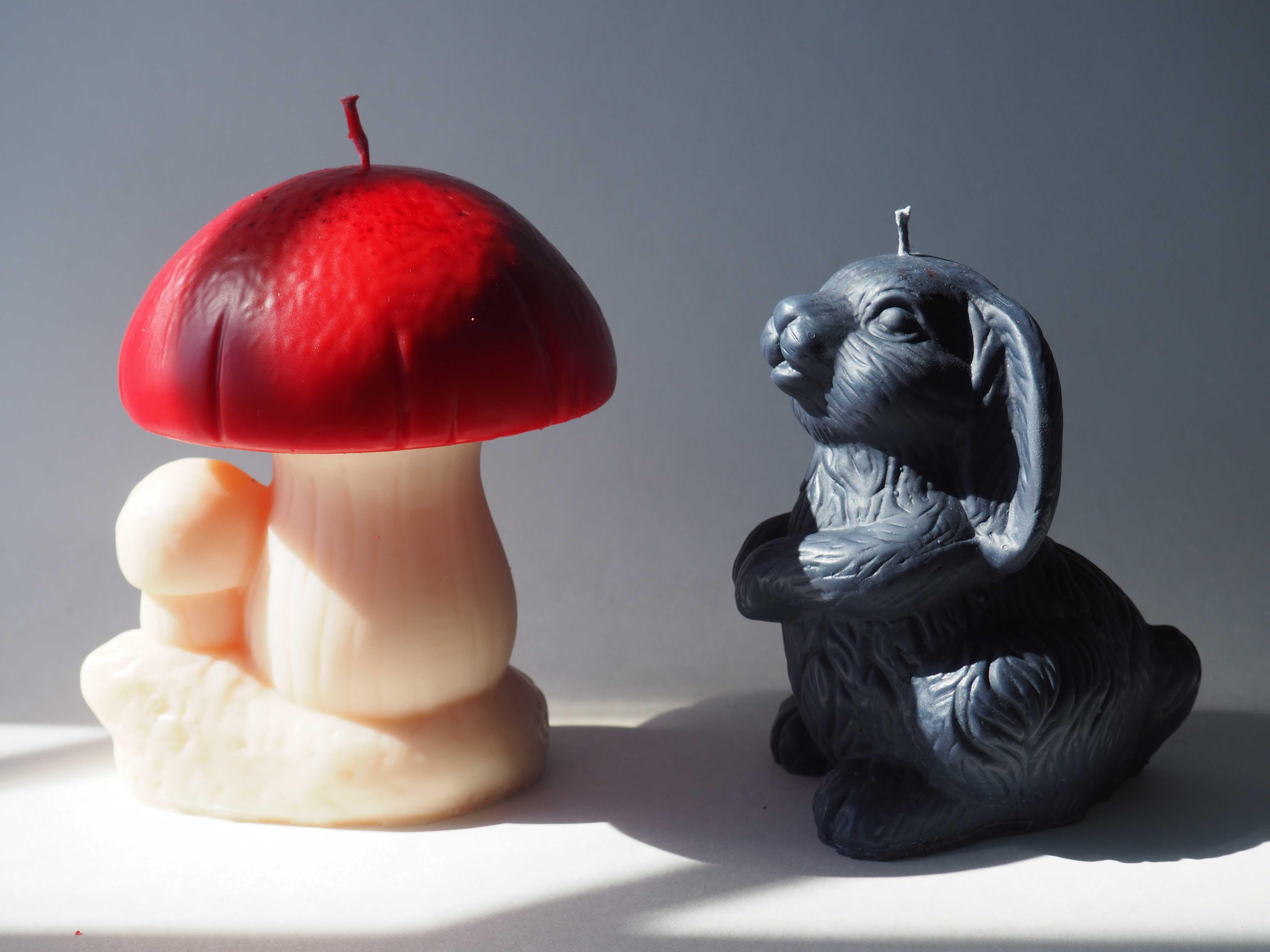 The Fairy Tale Mushroom & Black Rabbit